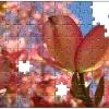 puzzle-personalizat-flori-1