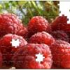 puzzle-personalizat-fructe