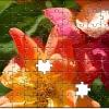 puzzle-personalizat-imagini-flori