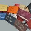 carduri-bani-nunta-meniuri-nunta-2011-101-copy