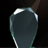 trofee-sticla-gsw-007